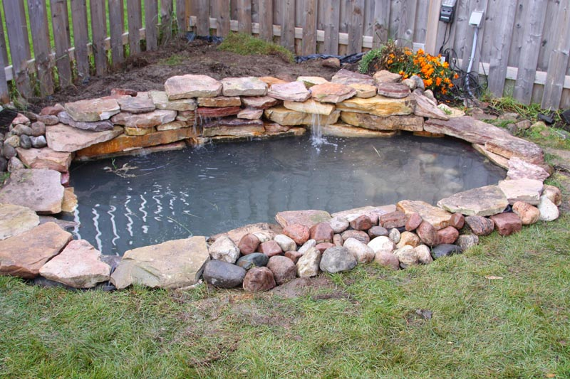 Toronto pond constructions fundamentals and techniques for Building a small pond
