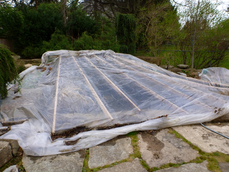 Setup greenhouse covering koi pond winter pond cover for Fish pond setup