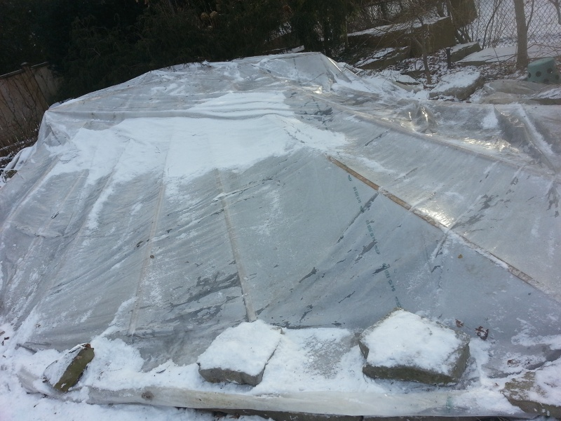Setup greenhouse covering koi pond winter pond cover for Koi pond in winter