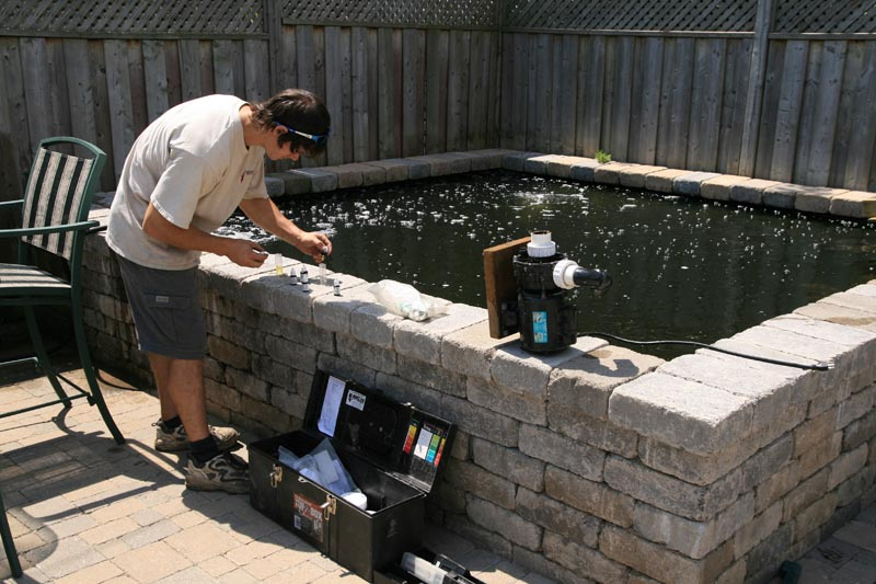 Koi pond services pond maintenance construction toronto for Fish pond repair