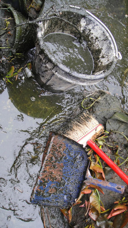 Pond ecology and the microbial loop in koi ponds for Self cleaning pond
