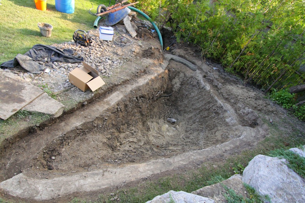 Clean with out pond excavator pictures to pin on pinterest for Sunfish in a backyard pond