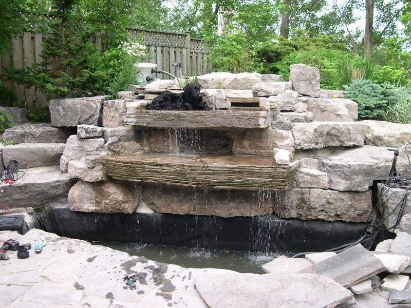 Photographs of a koi pond build for Creating a pond
