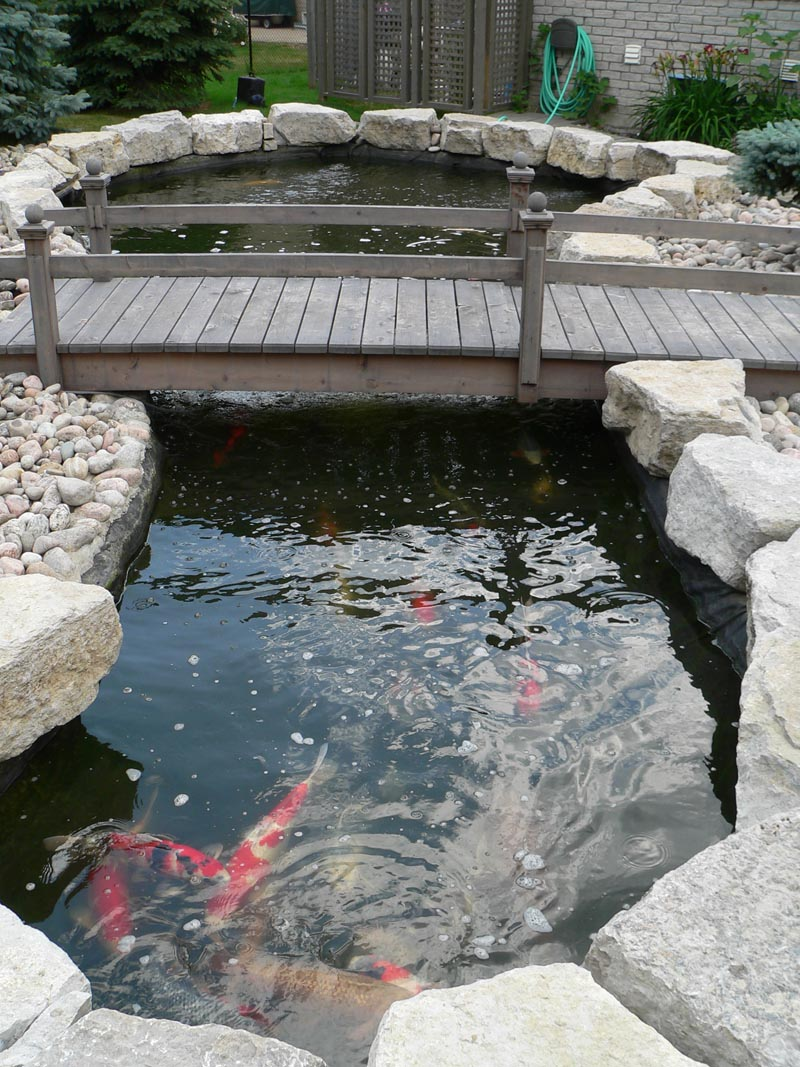 Pond photos for Koi pond return jets