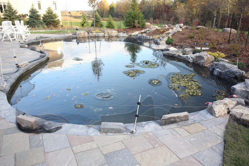 Toronto gardeni pond pictures for Koi pond return jets