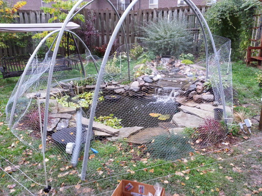 What S Wrong With My Garden Pond Water: Pond Electric Fences