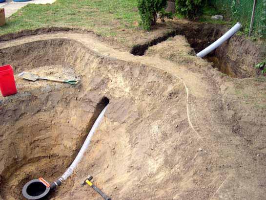 Tancho showa picture goshiki photo pond pictures for Koi pond rock bottom