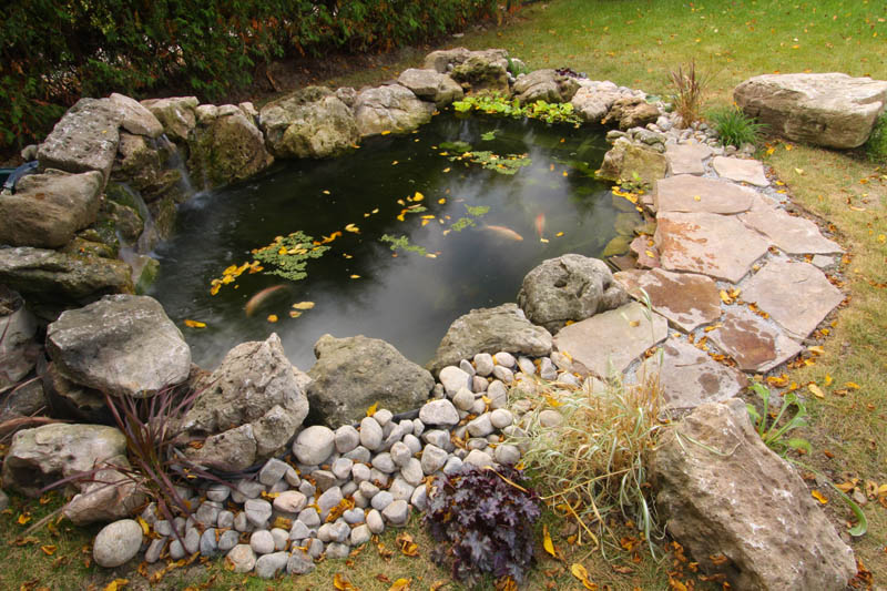 This Pond Build From 2007 Features A Bottom Drain And External Filtration